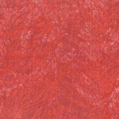 Season's Splendor Batiks - Bush Watermelon Yardage