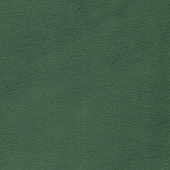 "Cuddle Extra Wide - Evergreen 90"" Minky Yardage"