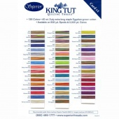 King Tut Threads Variegated Color Card #1