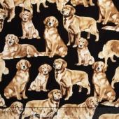 Dogs - Golden Retrievers Yardage