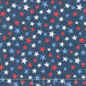 America, My Home - Star Toss Multi Yardage