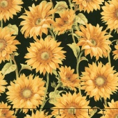 Follow the Sun - Large Packed Sunflowers Black Yardage