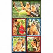 Squirrel! - Bright Glasses Panel Multi Panel