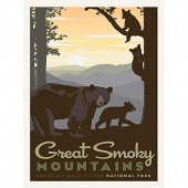 National Parks - Great Smoky Mountains Poster Panel