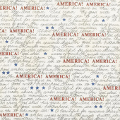 Land That I Love - America the Beautiful Barnwood White Yardage