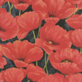 Scarlet Dance - Packed Poppies Black Yardage