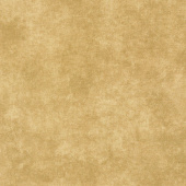 """Beautiful Backings - Suede Texture Sandlewood 108"""" Wide Backing"""