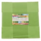 Bella Solids Lime Junior Layer Cake