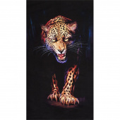 Animal Kingdom - Cheetah Wild Digitally Printed Panel