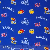 College - Kansas Allover