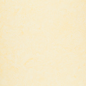 Tonga Batiks - Icing Dotty Spiral Honey Yardage