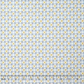 Aunt Grace - Checker Board Blue Yardage