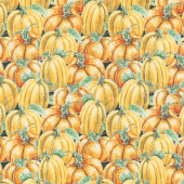 Rake and Bake - Pumpkin Collage Orange Yardage