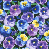 Pansy Paradise - Medium Pansies Black Yardage