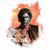Star Wars - Han Solo Orange Panel