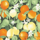 Ambrosia Farm - Citrus Grove Midnight Fabric Yardage