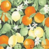 Ambrosia Farm - Citrus Grove Midnight Fabric Yardage