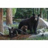 Black Bear Adventure - Black Bear Earth Digitally Printed Panel