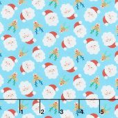 Jolly Season - Santas Frost Yardage