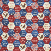 Stonehenge Stars and Stripes VII - Big American Hexies Navy Multi Yardage