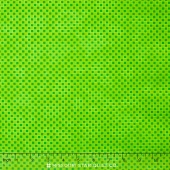 Color Union - Lime Blocks Yardage