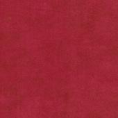 Primitive Muslin Flannel - Salsa Yardage