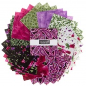 Wild Orchid Minis