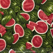 Farmer John's Garden Party - Watermelon Red Yardage