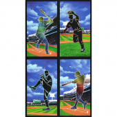 Sports Life - Baseball Multi Digitally Printed Panel