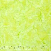Artisan Batiks Solids - Prisma Dyes Oregano Yardage