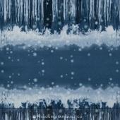 Sugar Plum - Reflection Midnight Yardage