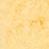 Sunset Plumes Batiks - Tiles Honey Yardage