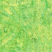 Punch Batiks - Vine Lemon Lime Yardage